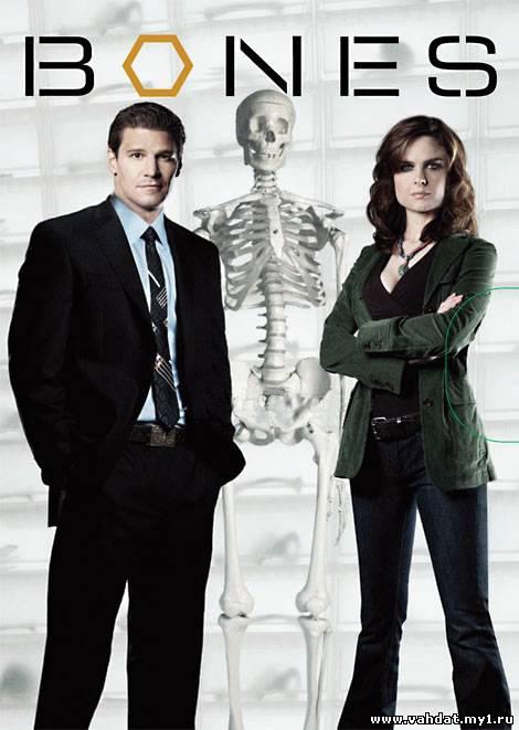 Сериал Кости - Bones 1 сезон (2005-2006) На Русском
