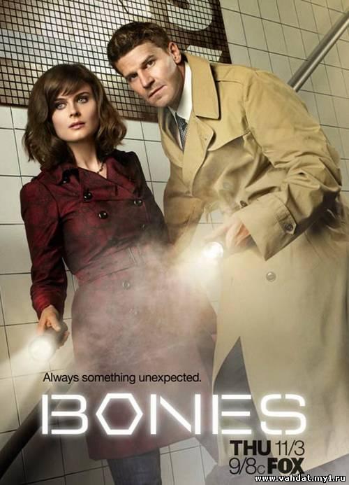 Сериал Кости - Bones 8 сезон (2012-2013) На Русском