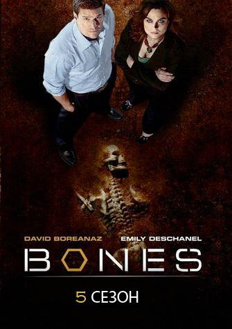 Сериал Кости - Bones 5 сезон (2009-2010) На Русском