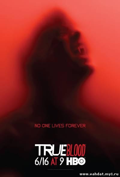 Сериал Настоящая Кровь - True Blood 1 серия 6 сезон на русском онлайн - Триллер -